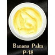 P-18 Banana Palm